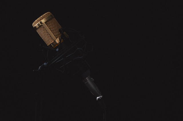 microphone-2130806_640